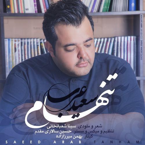 دانلود آهنگ جدید سعید عرب تنهام