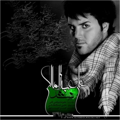 دانلود آهنگ جدید علی عبدالمالکی نشد