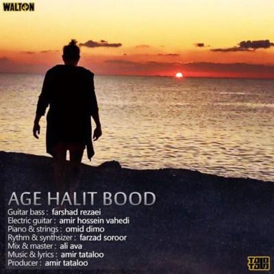 Amir Tataloo - Age Halit Bod