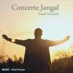 Emad-Ghavidel-Concerte-Jangal-427x430