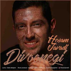 دانلود آهنگ جدید حسام جوادی به نام دیوونگی