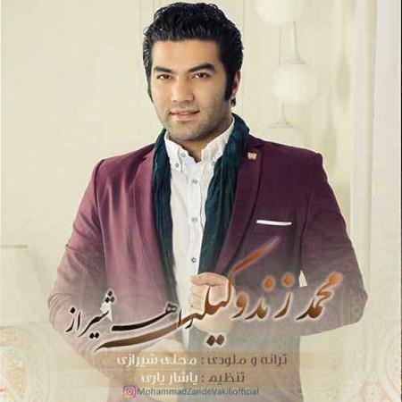 دانلود آهنگ جدید محمد زندوکیلی راه شیراز