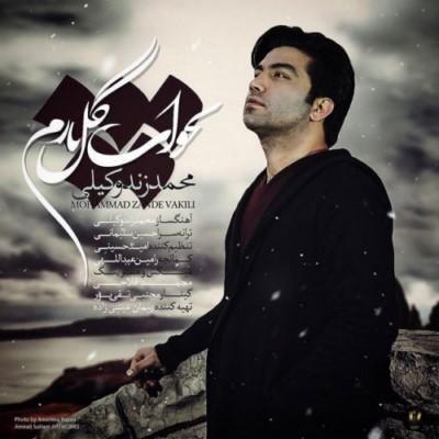 دانلود آهنگ جدید محمد زند وکیلی بخواب گل ناز من