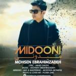 Mohsen-Ebrahimzadeh-Midoni-427x430