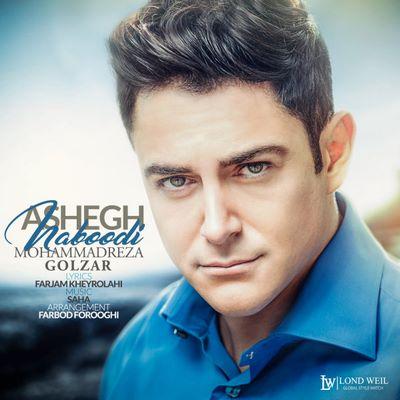 دانلود آهنگ جدید محمدرضا گلزار به نام عاشق نبودی